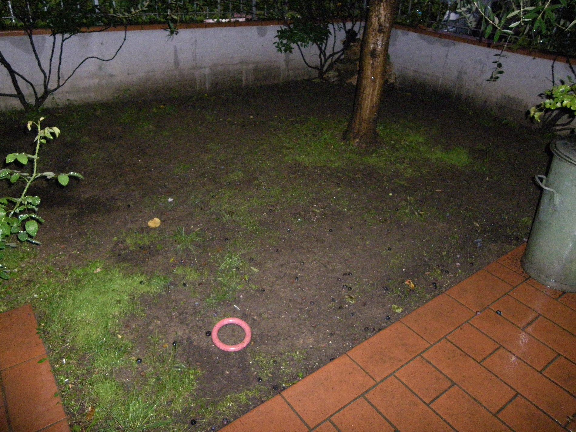 Porzione di colonica con giardino for Esterno di colonica industriale